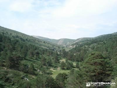 Valle del Lozoya - Camino de la Angostura;excursiones cerca madrid singles madrid grupos rutas facil